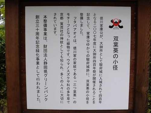 DSCN0367_01.JPG