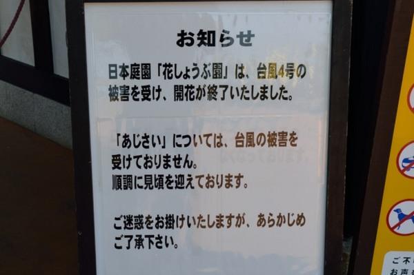 DSC_9435.JPG