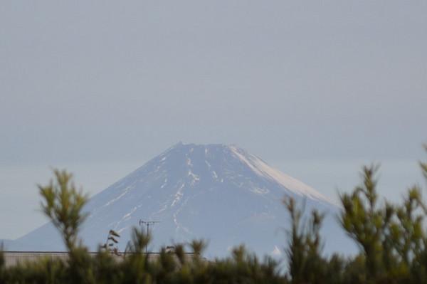Fuji11_27.JPG