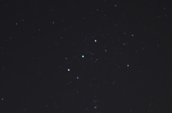 IMGP0911(1).jpg